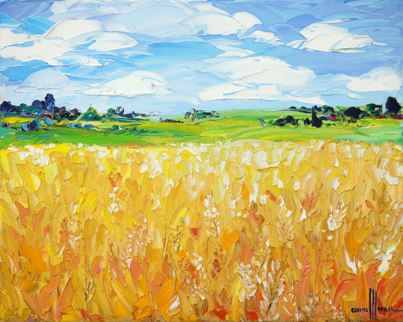 Fields with Sunshine