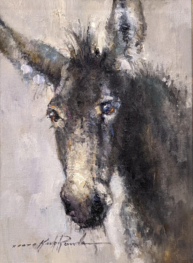 Donkey Eyes