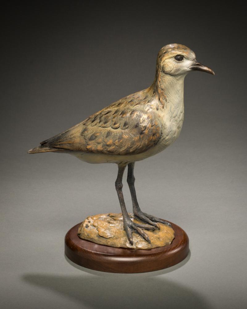 Standing Golden Plover