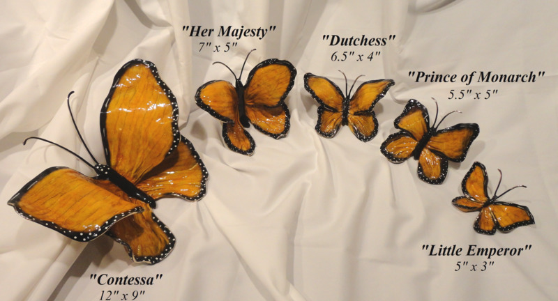 Butterfly-Monarch-Sizes