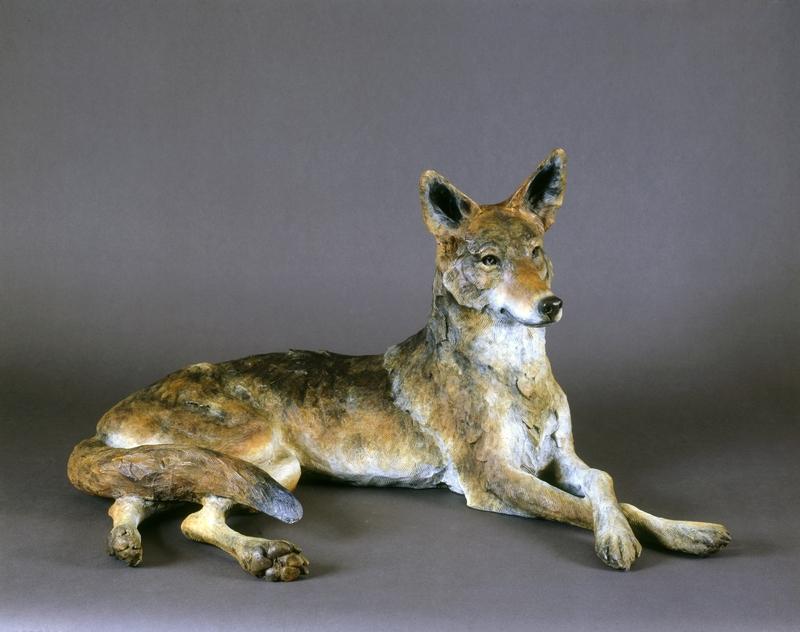Coyote II